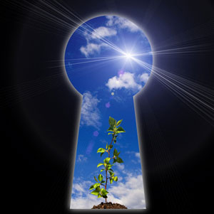 Keyhole showing a plant growing towards a sunlit blue sky.